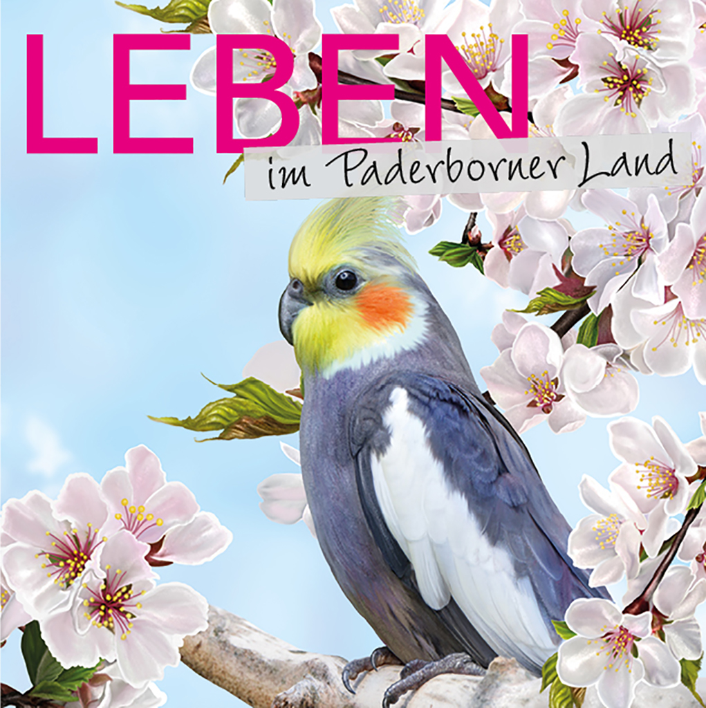 Leben im Paderborner Land 2020